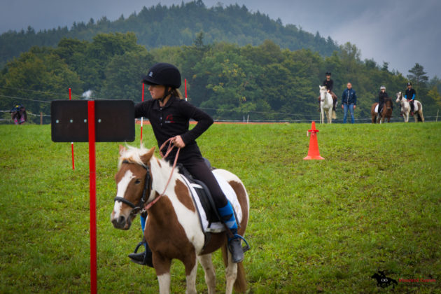 Mounted-Games-Team-Meisterschaft-2017-001