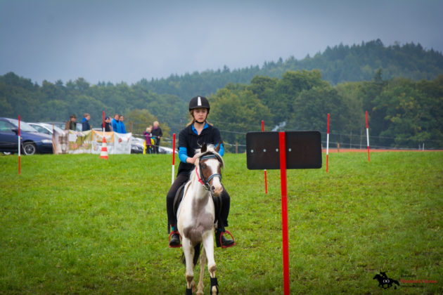 Mounted-Games-Team-Meisterschaft-2017-005