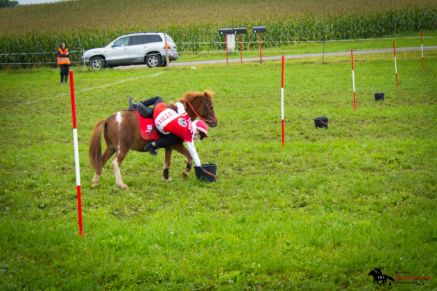 Mounted-Games-Team-Meisterschaft-2017-053