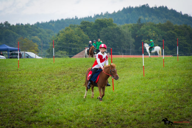 Mounted-Games-Team-Meisterschaft-2017-060