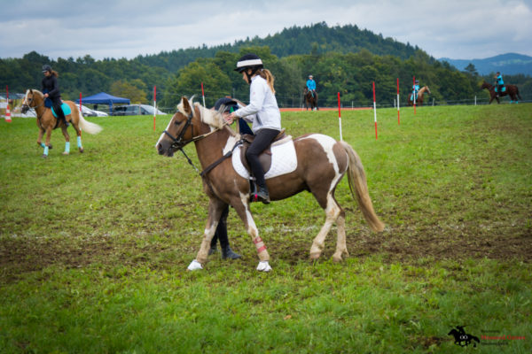 Mounted-Games-Team-Meisterschaft-2017-140