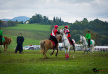 Mounted-Games-Team-Meisterschaft-2017-097